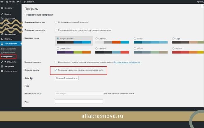 nastrojki-profilya-administratora-bloga-sajta-na-vordpress