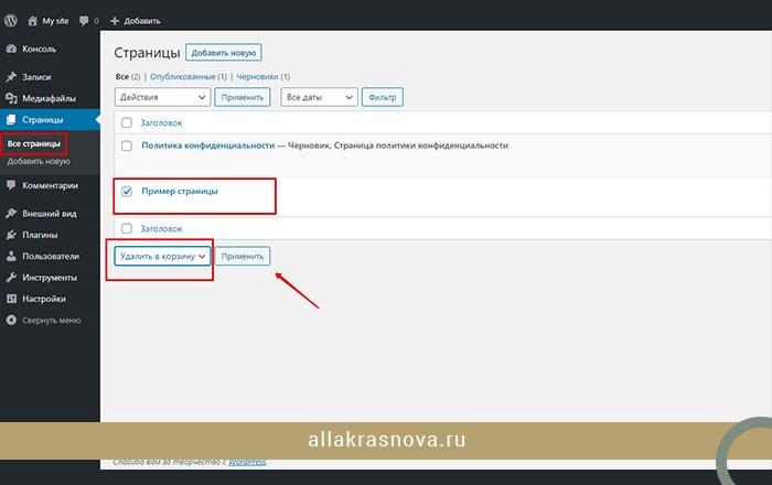 kak-udalit-primer-stranicy-v-bloge-sajte-na-vordpress