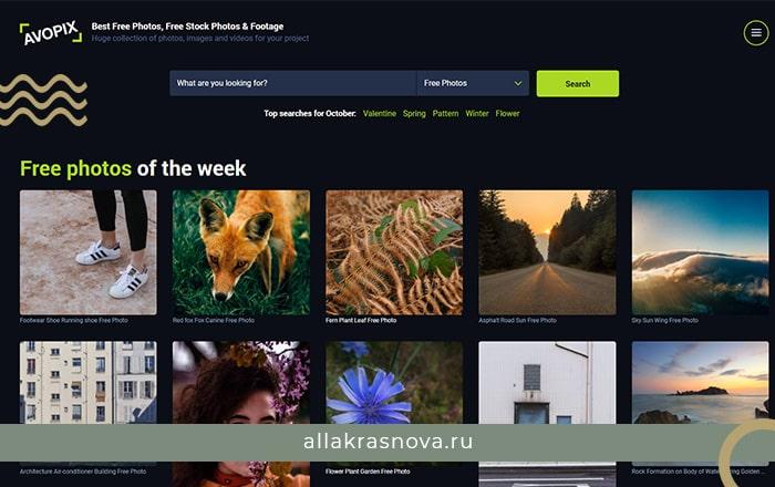 Avopix — бесплатный фотосток с фотографиями высокого разрешения