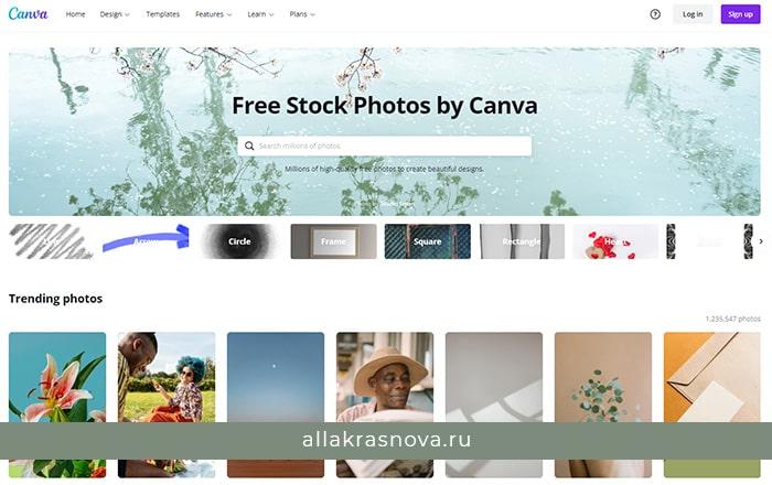Canva — бесплатный фотосток с фотографиями высокого разрешения