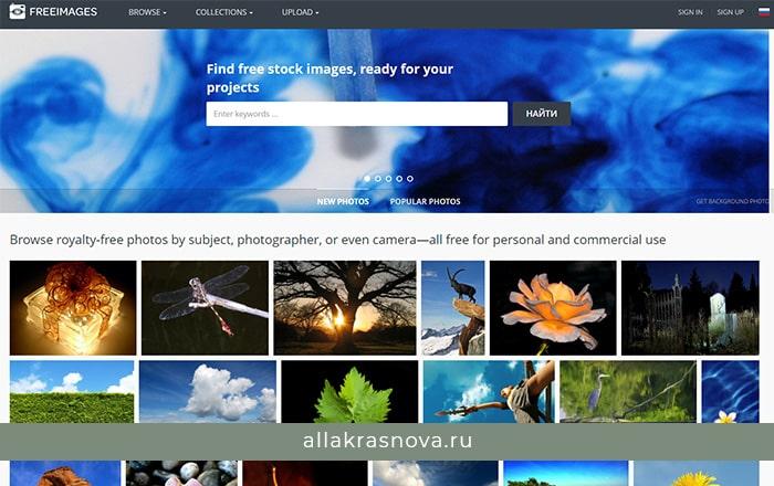 FreeImages— бесплатный фотосток с фотографиями высокого разрешения