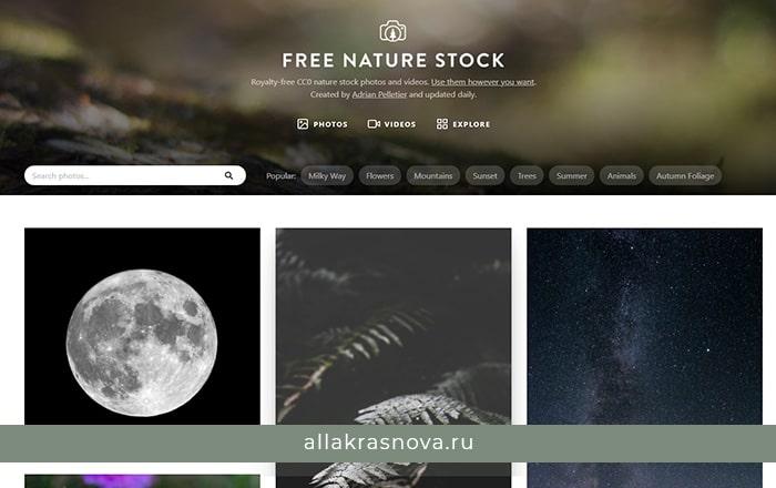 FreeNatureStock — бесплатный фотосток с фотографиями высокого разрешения