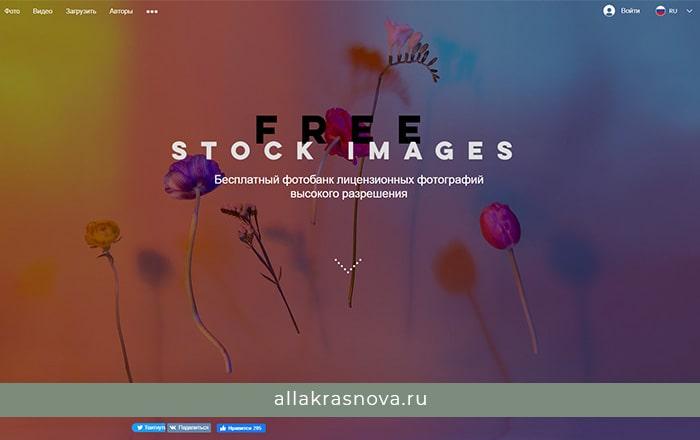 FreestockImages — бесплатный фотосток с фотографиями высокого разрешения