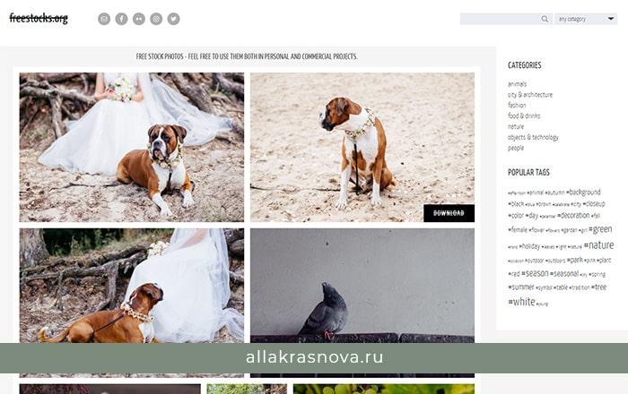 FreeStocks — бесплатный фотосток с фотографиями высокого разрешения