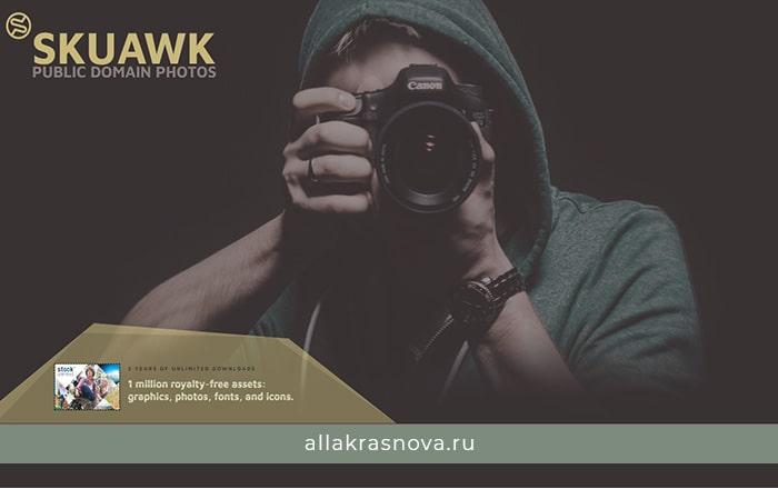 Skuawk — бесплатный фотосток с фотографиями высокого разрешения