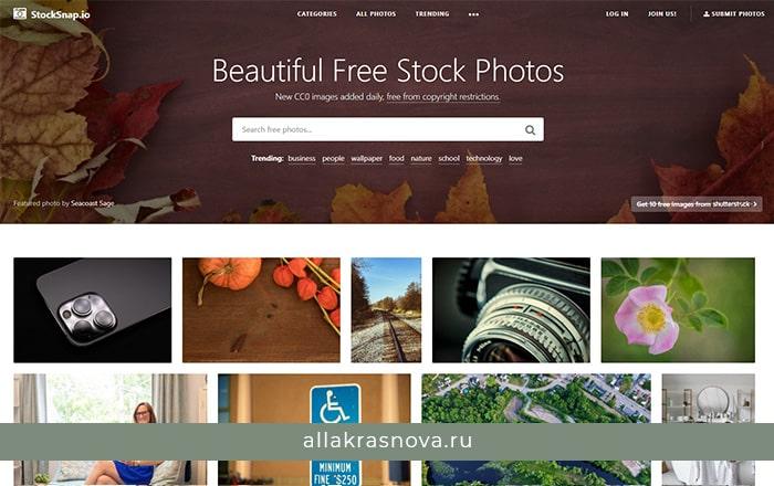 Stocksnap — бесплатный фотосток с фотографиями высокого разрешения